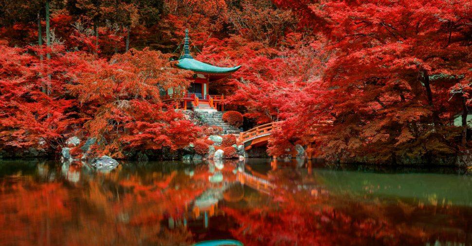autumn-foliage-at-daigo-ji-temple-kyoto-japan-DNMX6GE.jpg